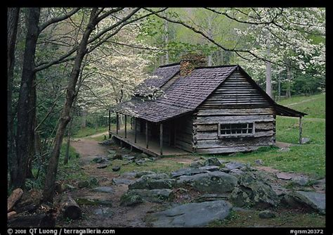 Middle Mountain Cabins by Picture Photo Noah Ogle Historical Cabin Framed By