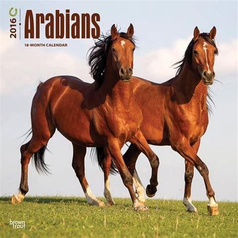 Calendario Arabe Caballo 225 Rabe Calendarios 2016