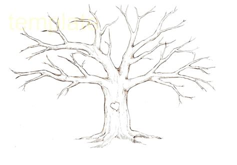 Printable Tree Branch Template