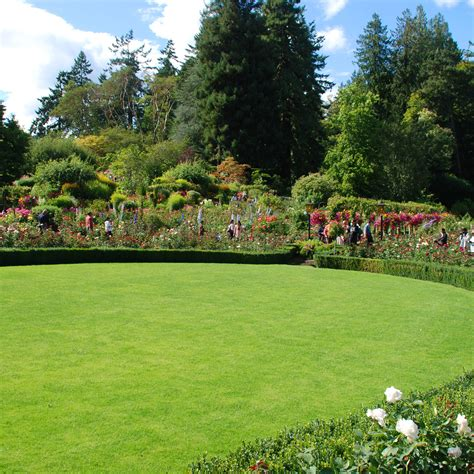 manutenzione giardini manutenzione giardini roma manutenzione giardini