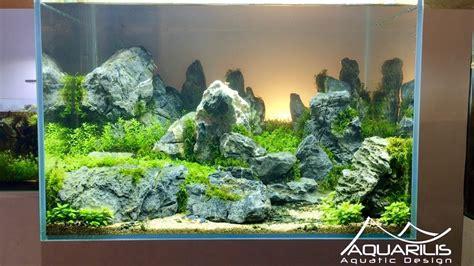 Decors Aquarium by Aquascape Quot Sunset Quot D 233 Cor D Aquarium Par Laurent Garcia