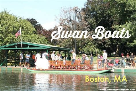 boston boat trips swan boats and more a boston day trip
