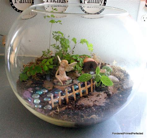 fairy terrarium pondered primed perfected garden terrarium
