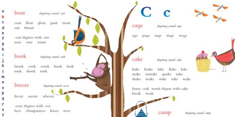 How To Find New Children S Dictionaries How To Find The Right Dictionary For Your Child Oxford