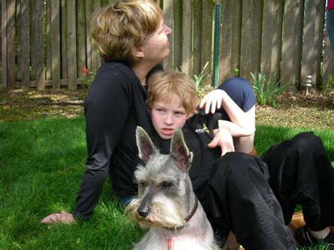 yorkie spay recovery baron s waggin miniature schnauzer rescue serving the pacific northwest