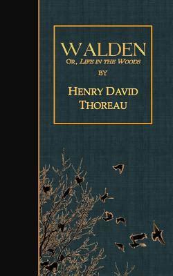walden book excerpt walden thoreau curious cats read