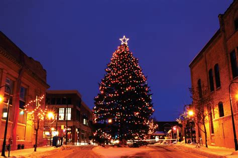 christmas trees in northern mi downtown tc holidays kick on 12 3 meal tickets
