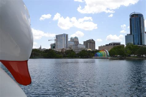 lake eola swan boats valentine s day on a shoestring 22 ideas under 30 in