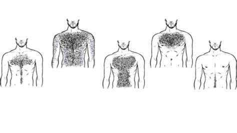 best manscaping designs top five chest hair styles coach