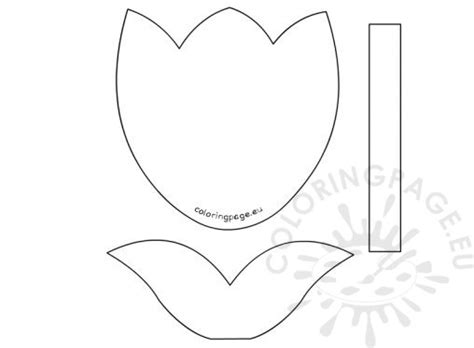 tulip flower template flowers coloring page