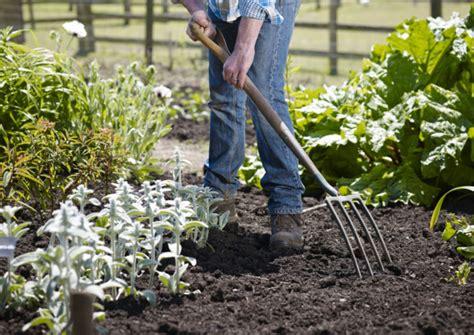 what s the best garden mulch the english garden