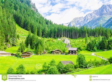 imagenes prados verdes prados verdes caba 241 as alpinas y picos de monta 241 a foto de