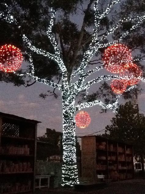 118 best images about christmas light display on pinterest