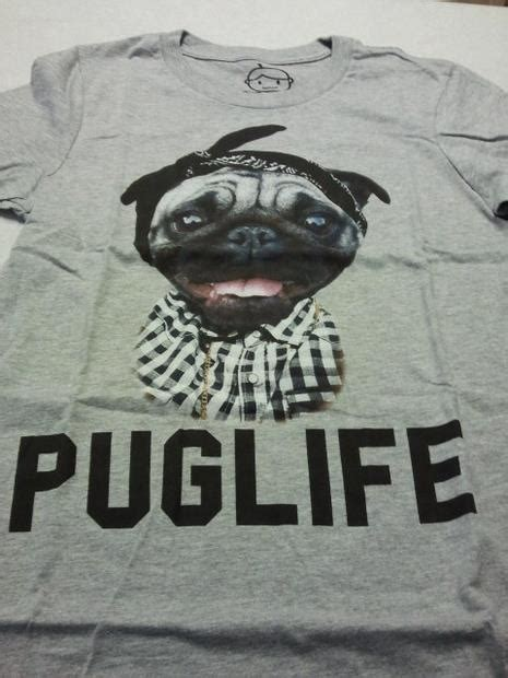 pugs maine apparently the pug chose me t shirt exchange redditgifts