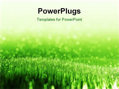 Grass Powerpoint Template powerpoint template background with green summer grass and water droplets 14949