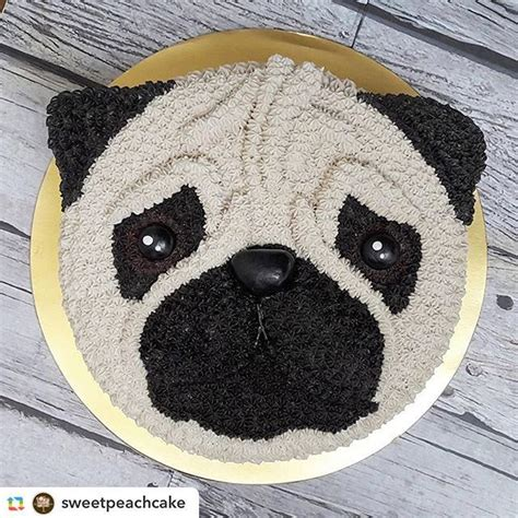 birthday cake pug best 25 pug cake ideas on pug birthday cake pug cupcakes and cakes