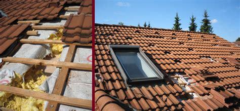 marder im haus vertreiben marder dachboden heimdesign innenarchitektur und m 246 belideen