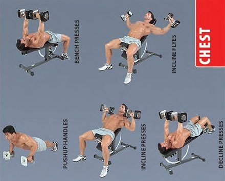 chest workout with dumbbells at home without bench dumbbell chest exercises strength and weights pinterest