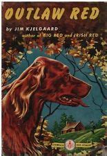 irish setter dog books 20 best big red setter books images on pinterest irish