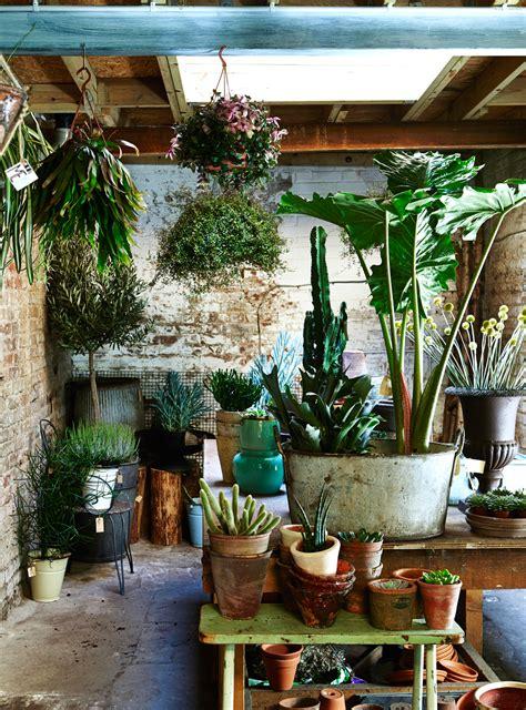 botanical home decor 7 easy ways to create botanical style at home decor8