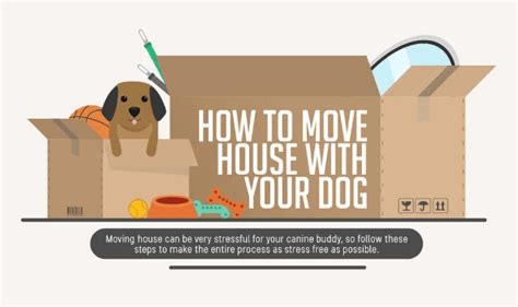 moving house with a dog how to move house with your dog infographic visualistan