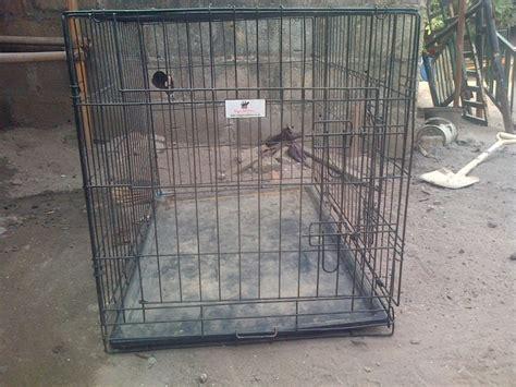 medium size crate medium size crate pets nigeria