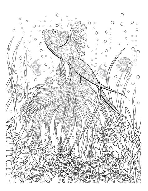 coloring adults oceana coloring coloring books and underwater