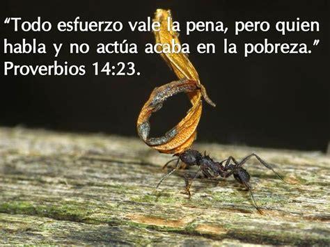 23 proverbios y versos bblicos para el da del padre el pensamiento del d 237 a falta de ezfuerzo el vers 237 culo