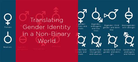 nonbinary gender identities history culture resources books translating gender identity in a non binary world k