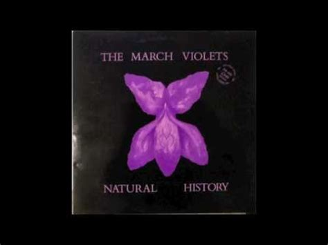 the violets of march the march violets snake