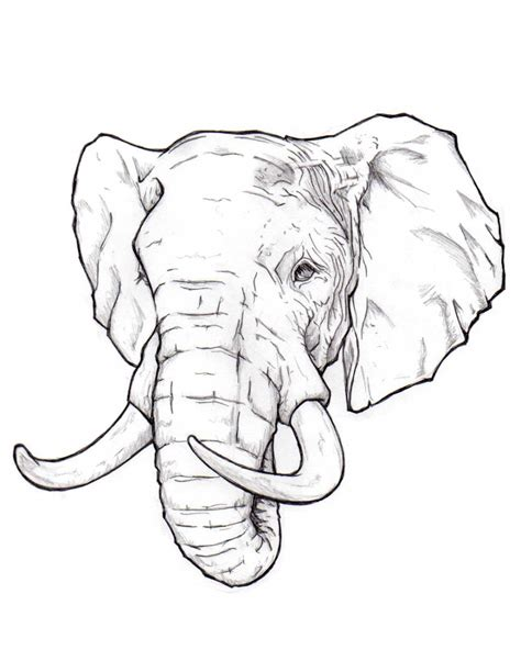 realistic elephant drawing realistic elephant drawing