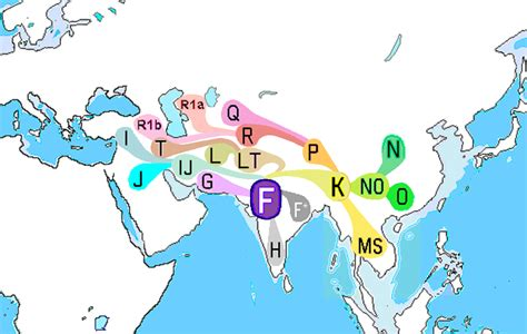 laplgroup modern houses haplogroup f m89 wikiwand