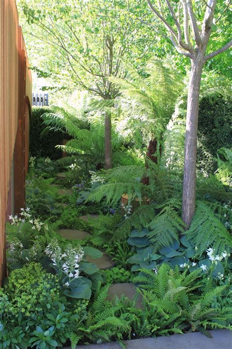 shade gardens zone 5 17 best images about garden favorites in shade part
