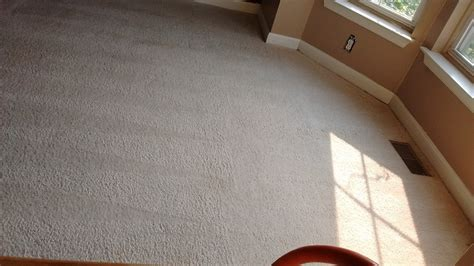 Upholstery Cleaning Maryland by Carpet Cleaning Rockville Md Montgomery Carpet Cleaners
