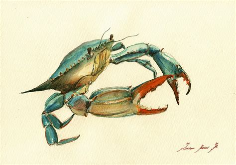 blue crab painting painting by juan bosco