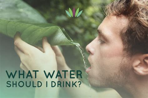 Allintitle What Can I Drink To Detox My by What Can I Drink To Detox My Naturally Signs