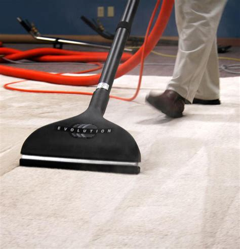 rug cleaning syracuse ny carpet cleaner not tested on animals carpet ideas
