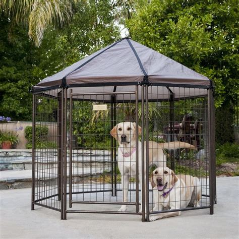 outdoor dog kennel advantek pet gazebo modular outdoor dog kennel 5 l x 5