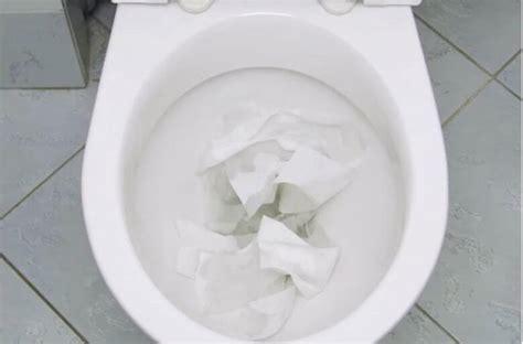 toilet zit verstopt tips en weetjes toilet verstopt zo ontstop je m weer met