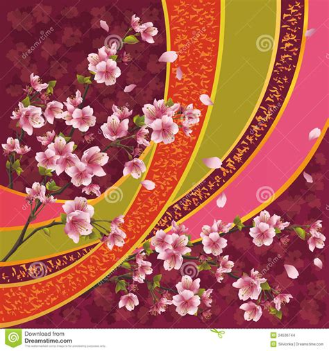 japanese pattern  sakura blossom stock images image