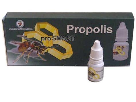 Obat Herbal M Pro obat herbal wisata lembang laman 3