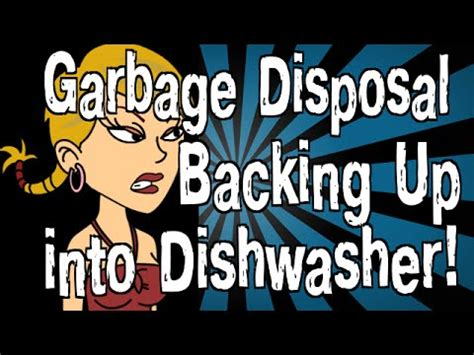 garbage disposal backing up into my garbage disposal is backing up into my dishwasher youtube