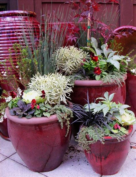 Garden In Pots Ideas 953 Best Images About Container Gardening On