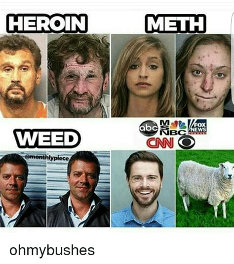 Heroin Meme - weed vs meth www pixshark com images galleries with a