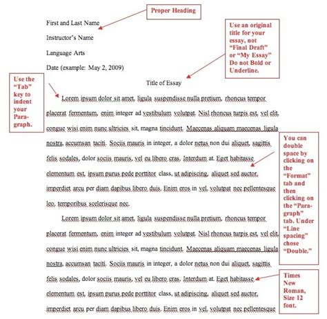 format essay bi article mla citation template typing your works cited page in