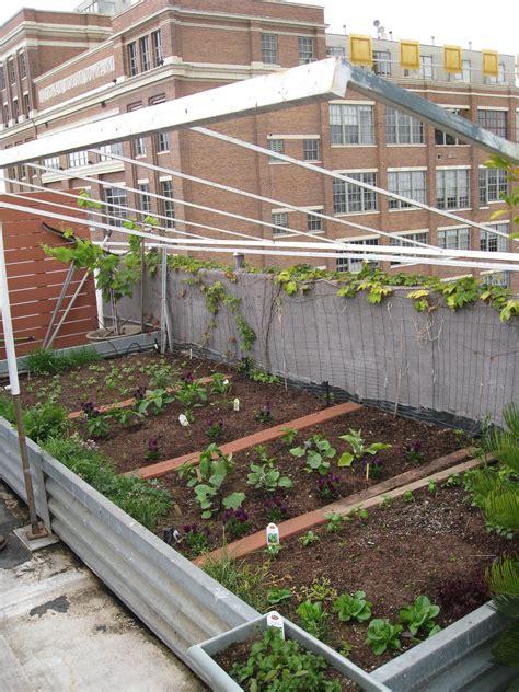 Roof Planters by Rooftop Garden In L A Gardenerd