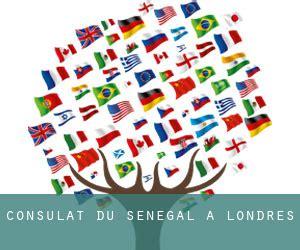 consolato senegalese ambassade du s 233 n 233 gal en angleterre t 233 l 233 phone coup 233 les