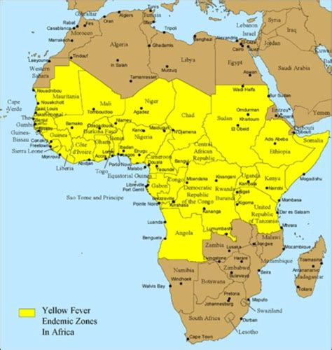 Sections Of Africa by Yellow Fever