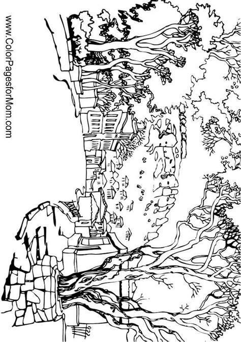 coloring pages for adults landscapes 2645 best images about coloring on