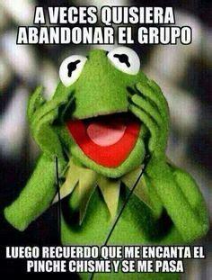 imagenes chistosas de la rana rene para navidad 1000 images about memes rana rene on pinterest memes